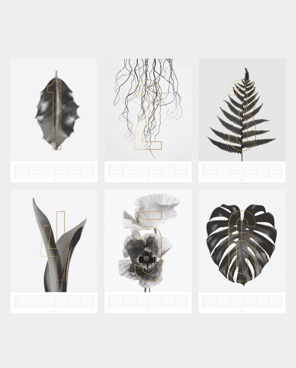 Wandkalender PLANTS