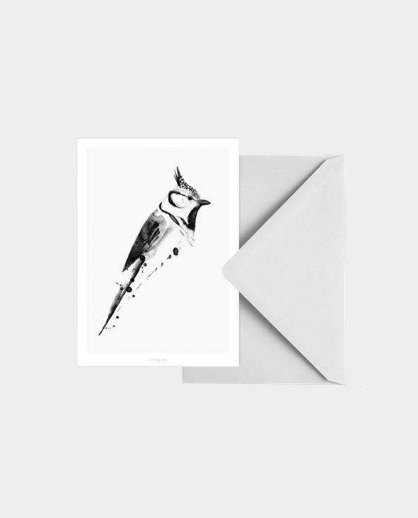 Postkarte BIRDY N°5