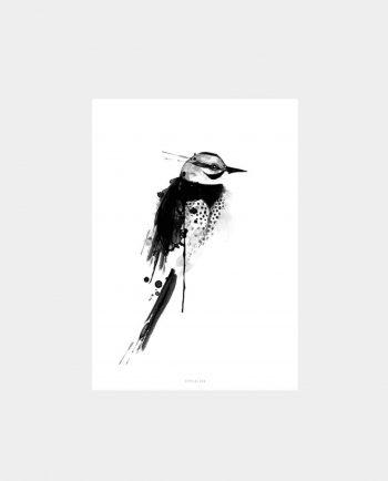 Print BIRDY N°5